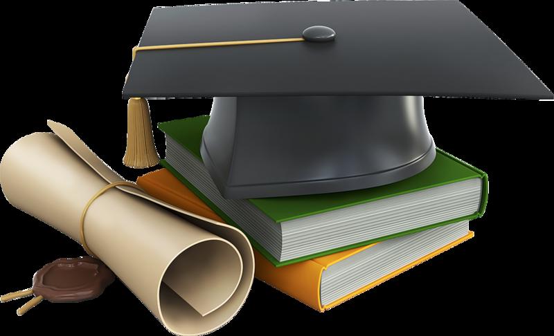 Образование и история